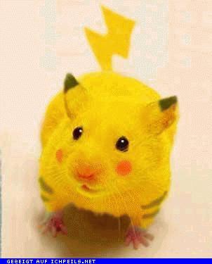 Les pokémon!! En vrai! Mouse_as_pikachu